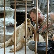 В клетке с львицей