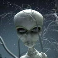 Найдено кладбище инопланетян