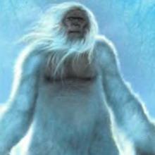 Где ты Йети - Снежный человек