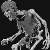 Найден скелет на Луне