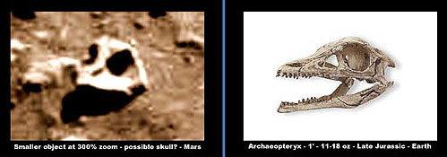 Голова на переднем плане - будто бы от ископаемой птицы археоптерикса.